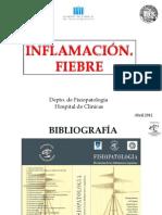 Modulo 1-TERICO_INFLAMACIN_Y_FIEBRE.pptx