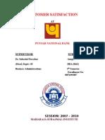 Project Report PNB (1)