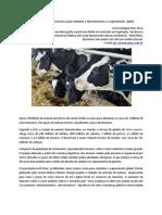 Reduzir a população de bovinos para combater o desmatamento e o aquecimento  global