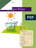 Informe Experimento Biologia