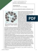 ¿Cómo evolucionó la fotosíntesis C4