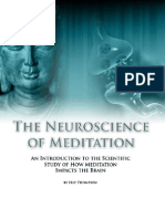Neuroscience of Meditation - Chapter 4