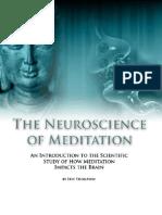 Neuroscience of Meditation - Chapter 4