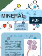Mineral Fe Cd Cl Na
