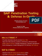 SAP  Penetration Test Framework
