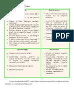 Analiza SWOT a Companiei Cotnari