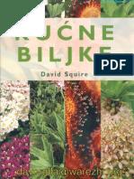 kucne biljke