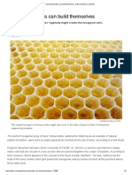 How Honeycombs Can Build Themselves _ Nature News & Comment