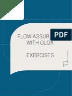 OLGA Exercises