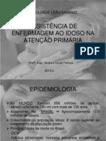 Aula Do Idoso 2013.2 - Atual