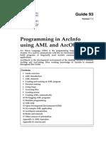 Programming AML AO GIS