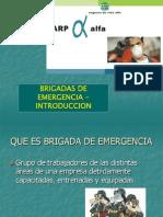 Introducción Brigadas de Emergencia