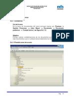 Manual Documentos Preliminares