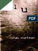 Flux - Mihai Curtean-fragmente