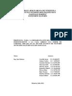 Proyecto Servicio Comunitario 2013 (4)