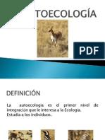 autoecologia 2013
