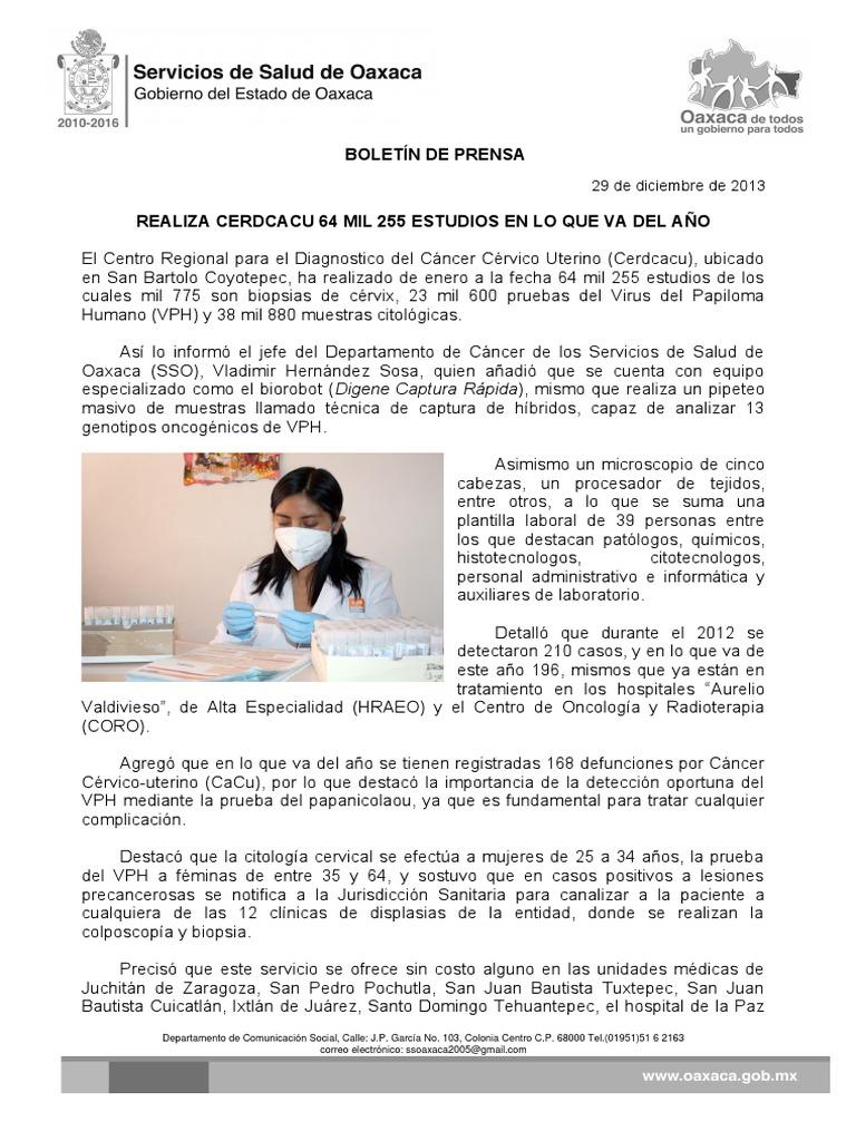 Hermosa Plantilla De Estudio De Caso Paciente Ornamento - Ejemplo De ...