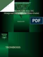 14. Dic (Dr.hadianti)