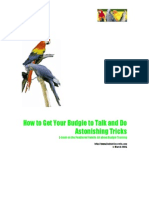 Parrots - Book 1 Talk and Tricks