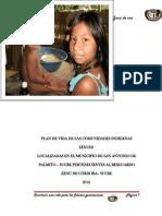 Plan de Vida de Las Comunidades Indgenas Palmito 2012
