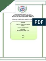 Porta Folio Comput Ac i on Actual