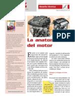 La+Anatomia+Del+Motor