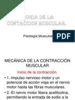 Teoria de La Contraccion Muscular