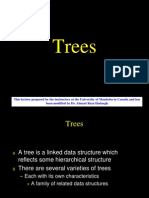 13 Tree