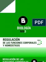 Articles-92972 ArchivoPowerPoint 0
