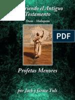 Spanish - The Minor Prophets Hosea - Malachi