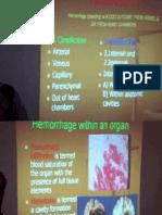 Pathanatomy Lecture - 01 Distribution of Blood Circulation