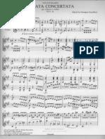 Paganini Concert at A Violin and Guitar Part