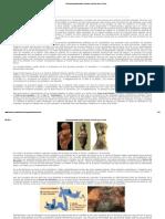 Prehistoria_ paleolitico_Arte _Homines.pdf