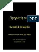 El Proyecto via Cruxis