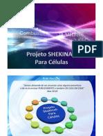 Projeto Shekinah para Implantação da Visão Celular