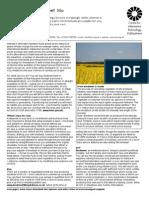 Biodiesel Buy or DIY