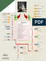 AaaAstral Process Map PDF