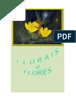 2313 Florais e Flores.doc