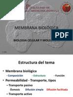 3_MEMBRANA BIOLÓGICA-giovana
