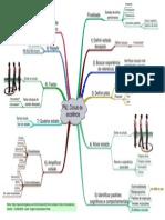 PNL - Mapa Mental - Circulo de Excelencia