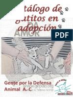Catálogo de gatos