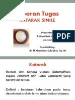 Presentation Katarak Senil