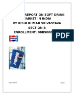 Project Report on Soft Drinks Market in India