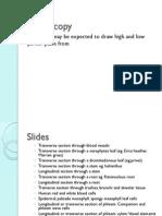 Microscopy Summary