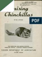 Raising chinchillas (1956)