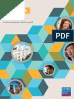 MBA Brochure 2013