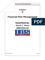 Financial Risk Management of IT companies