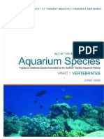 41348180 Aquarium Fish Species