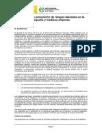 9_Auditorias.pdf