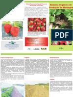 SISTEMA_ORGANICO_MORANGOS.pdf